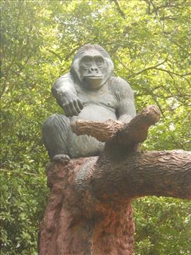 Sri Chamarajendra Zoological Gardens, Mysore