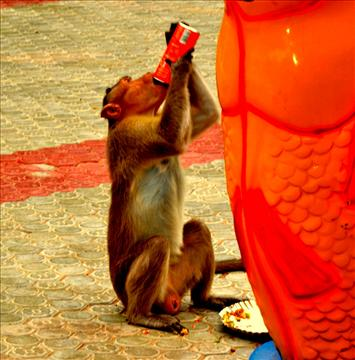 thirsty!!!!1
