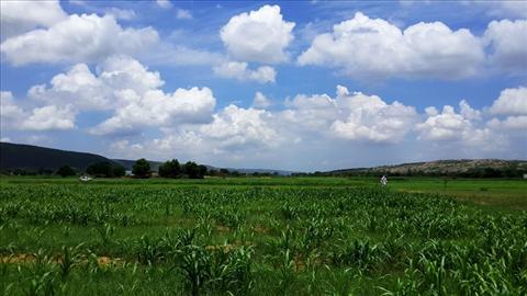 Farms of India