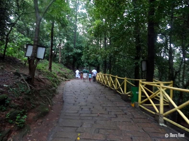 The rock pathway - Athirappilly
