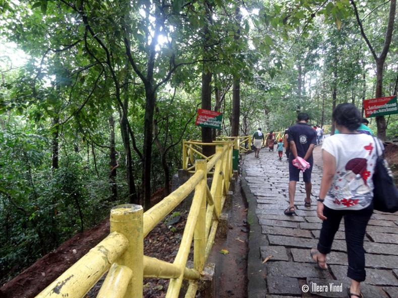 Rock pathway - Athirappilly