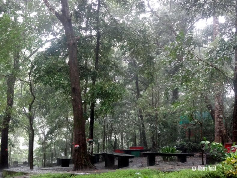 Resting place in Vazhachal