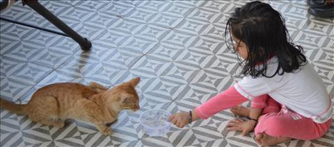 A girl serving a Cat