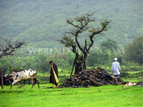 Khireshwar Village, Maharashtra