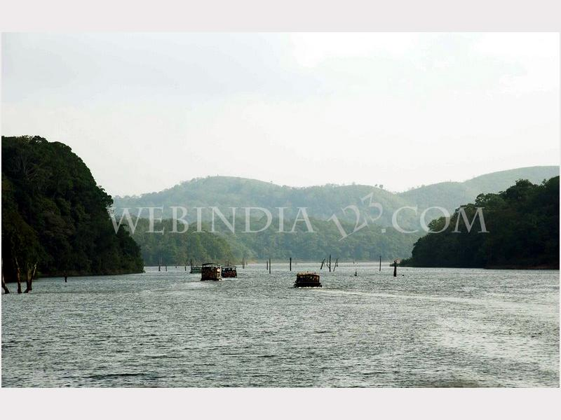 Thekkady  View from boat