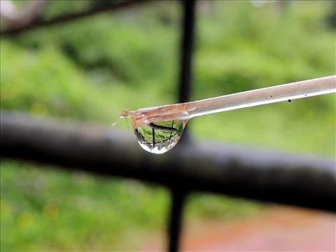 reflection inside water drop