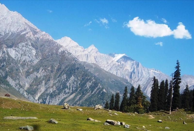 Beauty of Sonmarg