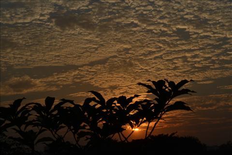 sunset in kolkatta