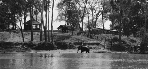 Dubare Elephant Camp, Coorg