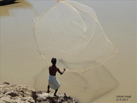 Fisherman at Ramnagar ghat