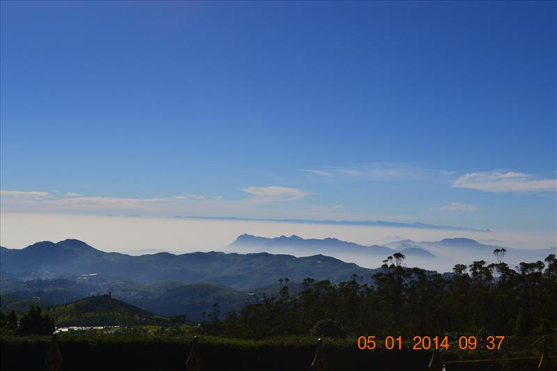 God's creation the Blue Nilgiris..