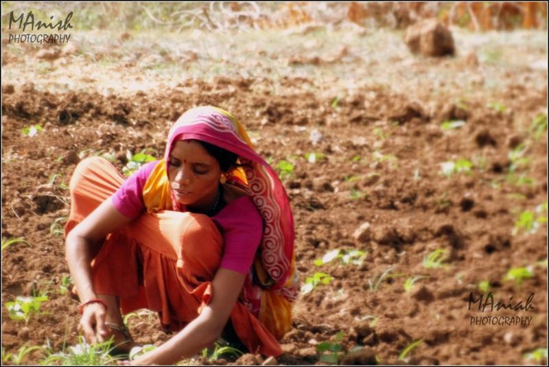 Woman - Always Hard Worker