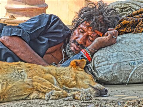 A hot day sleep