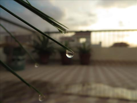 sunset in droplet