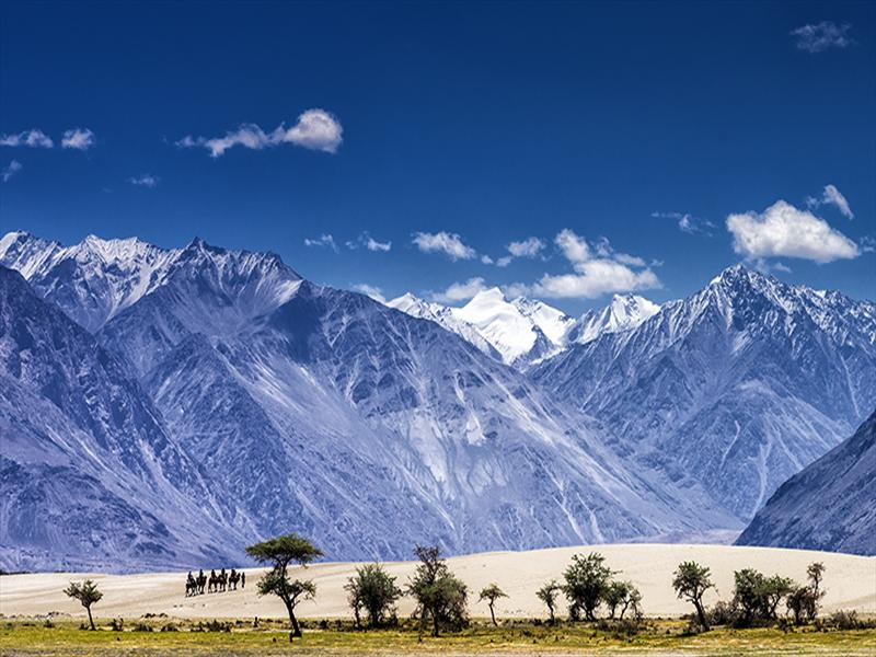 High and Dry - Nubra Valley