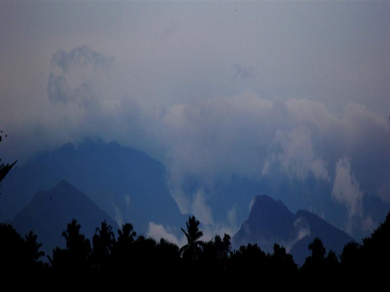 hall of smog