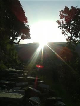 Iridescent Sunrise