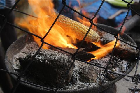 Corn In Flame