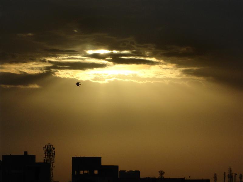 wake up sun...
