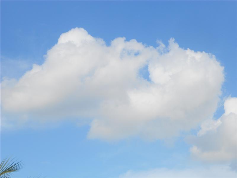 breezy cloud
