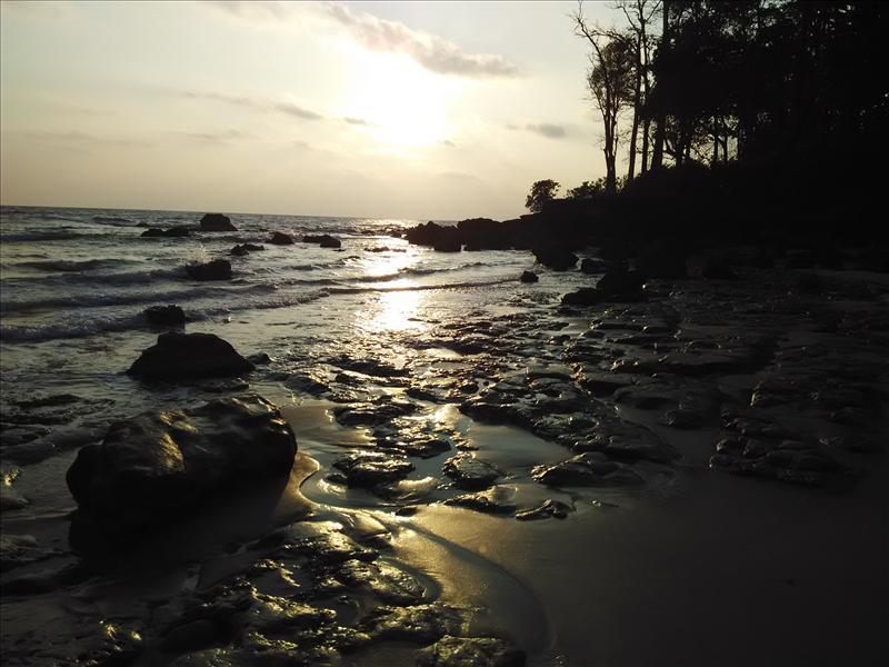 The Golden Sea