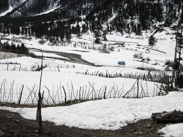 Beas River at winter