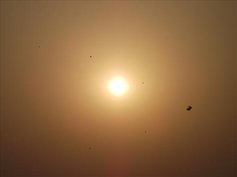 Sun With Kites