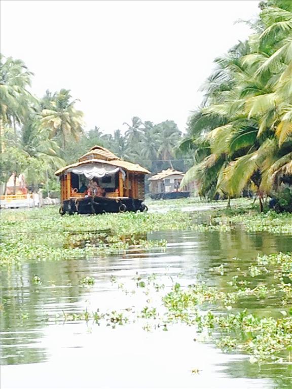 Backwaters of Aleppy in Kerala
