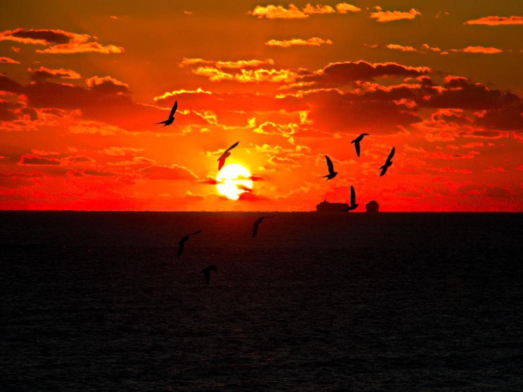 Beach and Sunrise