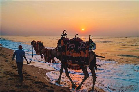 || SUNRISE AT PURI BEACH || - SATHI CHAL CHALA CHAL...