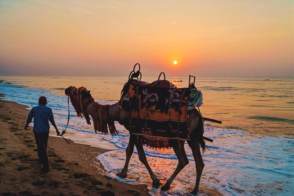 || SUNRISE AT PURI BEACH || - SATHI CHAL CHALA CHAL...