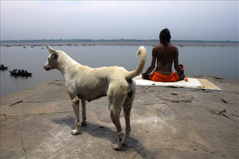 A sadhu doing mediation at Ganga River Varanasi .