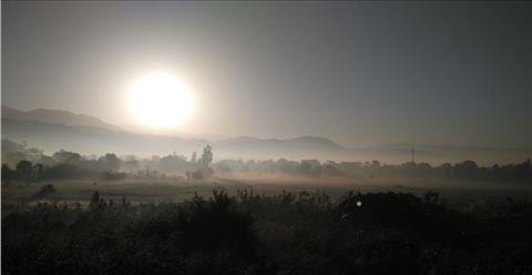 Foggy+Morning