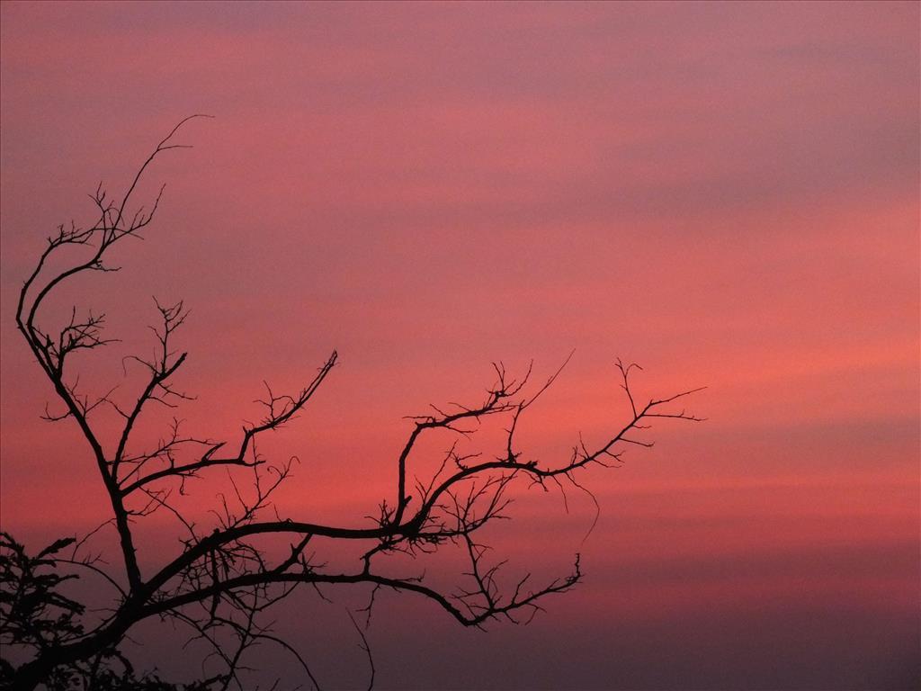 After Sun set