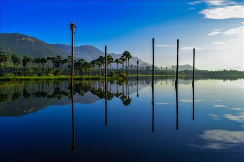 Beauty of Water Bodies!!