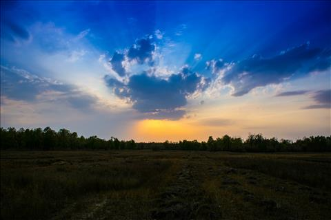 Sunset at Bandhavgarh National Park