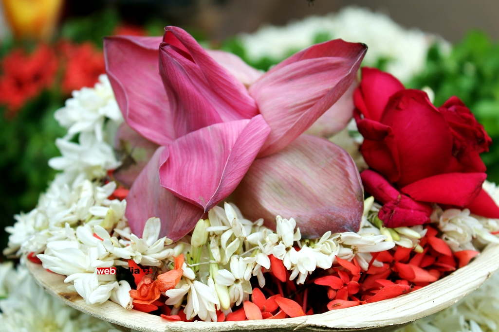 Lotus Flowers for sale at the entrance of Kollur Sri Mookambika Temple