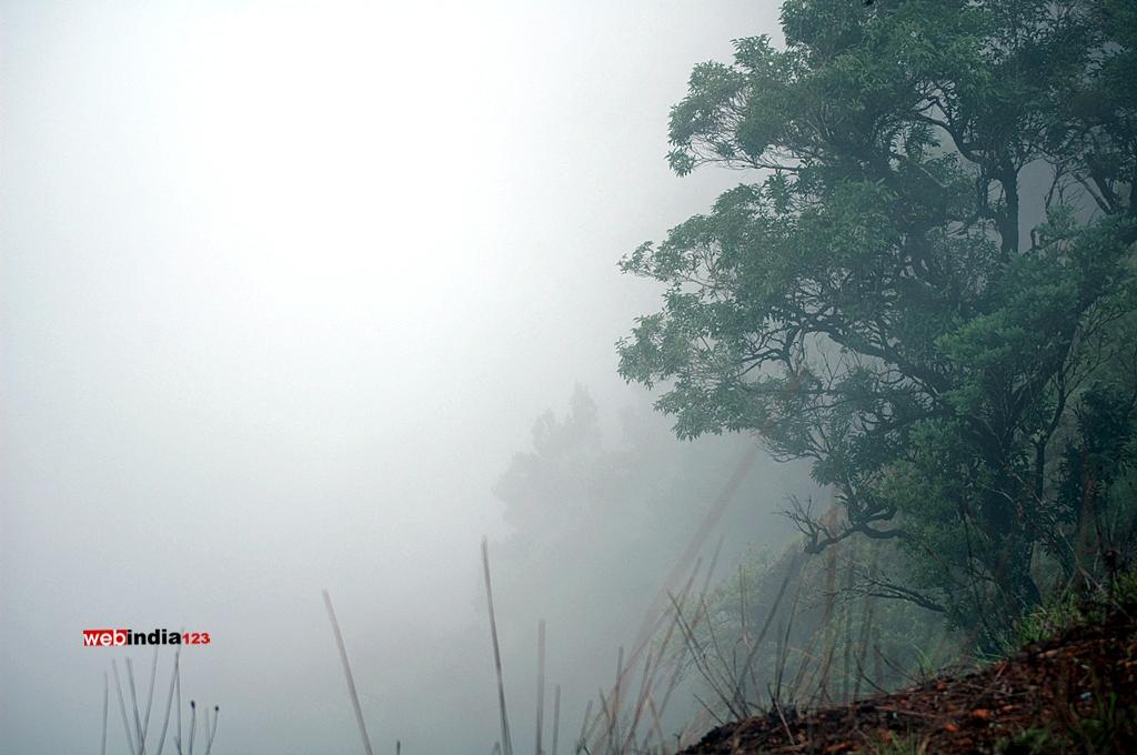 Road to Kollur Sri Mookambika Temple