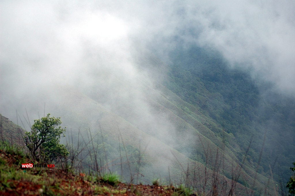 Kodachadri peak