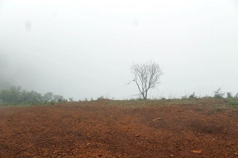 Kodachadri