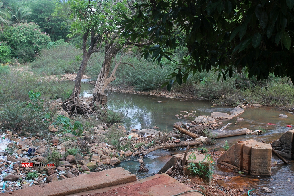 Souparnika River Kodachadri