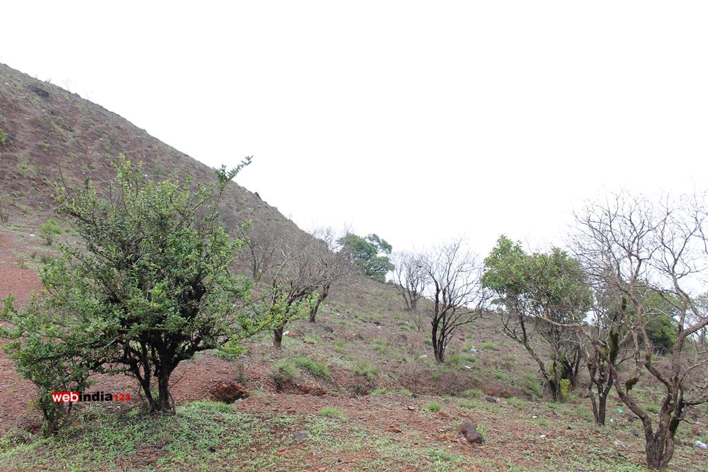Kodachadri Trek Route