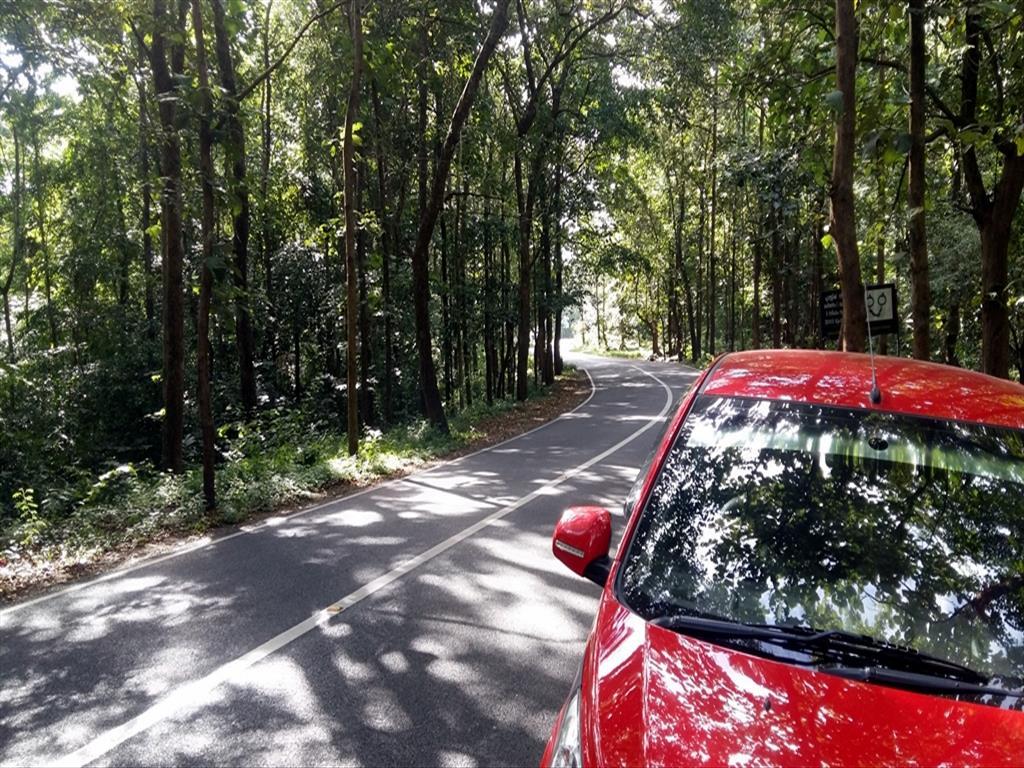 Munnar Route