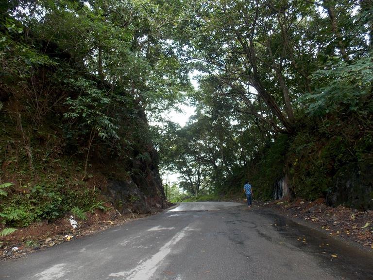 Munnar Chinnakanal Road