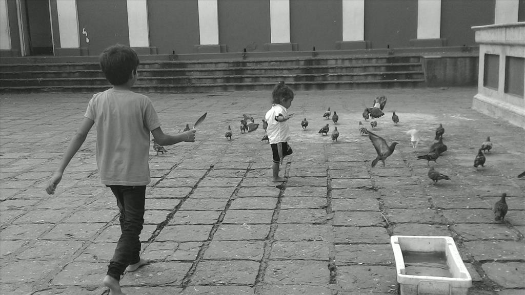Kids and Birds