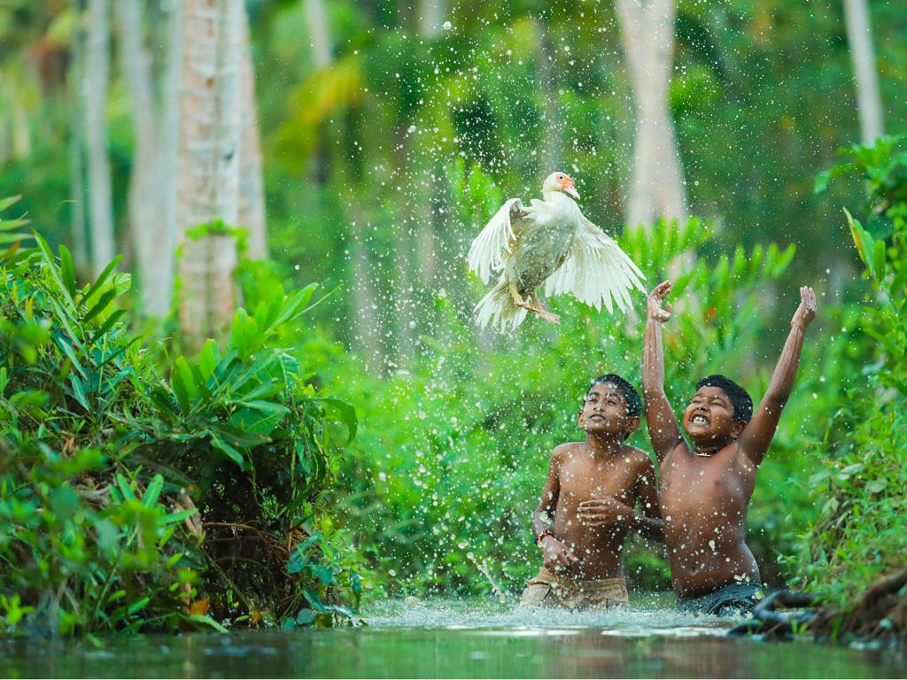 Children playing with muscovy duck