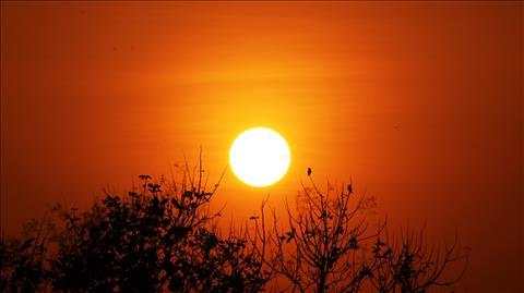Sunrise+with+Nature