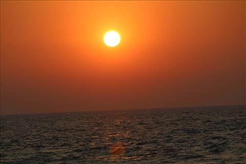 sun set....how golden it is....!