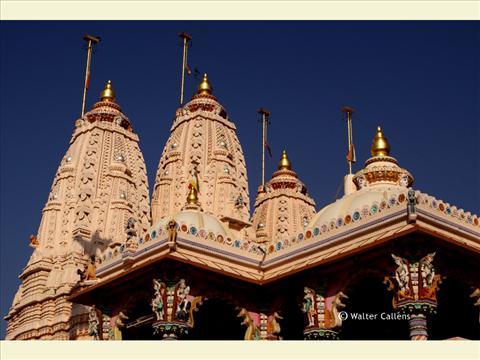 Rabari temple (Dubhrej village).
