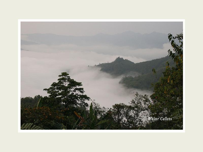 The highlands of Nagaland.